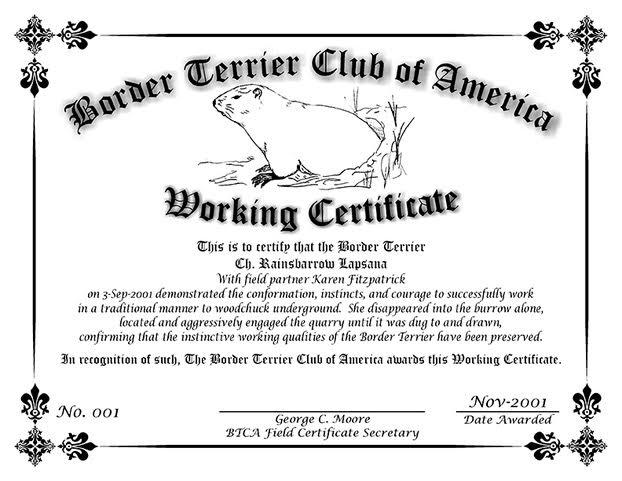 Working Certificate example