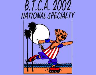 2002 BTCA National Logo