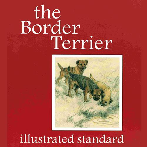 Illustrated Standard