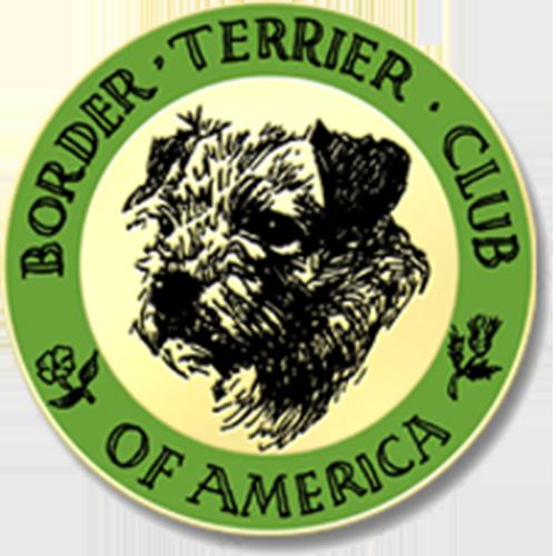 Club logo pin